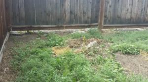 Growing soil